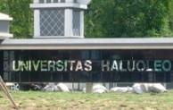 Pembukaan Pendaftaran Universitas Haluoleo