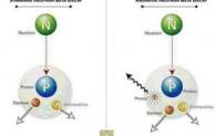 Pengertian Neutron dalam Mempelajari Atom