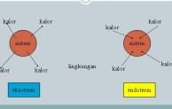 Reaksi Eksoterm dan Endoterm