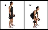 Melatih Kekuatan Otot Tangan