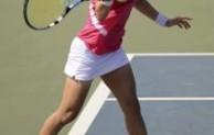 Pengertian Olahraga Tenis