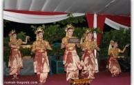 Tari daerah Provinsi Sumatera Selatan