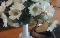 Bunga cantik untuk pacar saat valentine