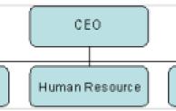 Bentuk organisasi lini dan fungsional
