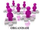 Pengertian organisasi menurut ahli